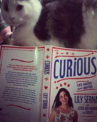 Curious, by Lily Serna
